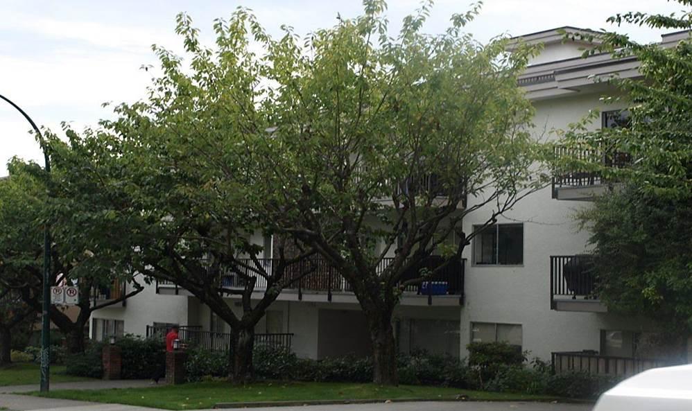 2086 West 2nd Avenue, Vancouver